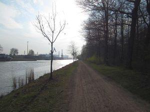 nordhafen, mecklenheider forst 032